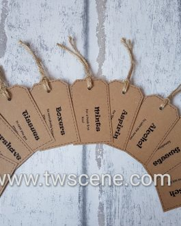 Luggage style groom tags
